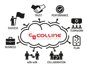 Colline Integrated Security Best Practices